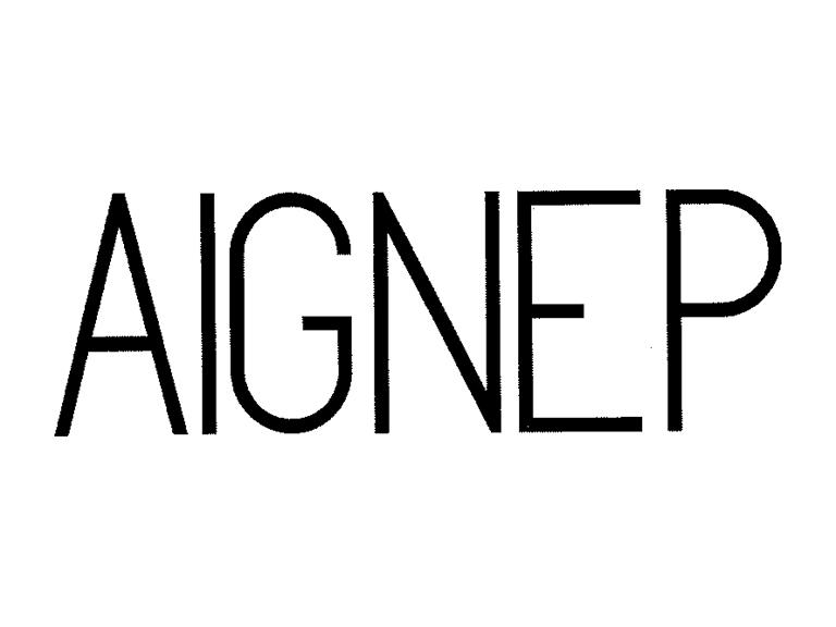 AIGNEP S.P.A. (Italy)